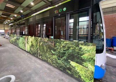 Vollfolierung Bus Seitenteil mit Waldmotiv